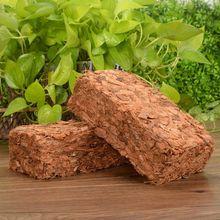 500 г Кокосовая Койра кирпич торф выращивание органический Soilless горшок Сад Природные растения почвы питательный слой