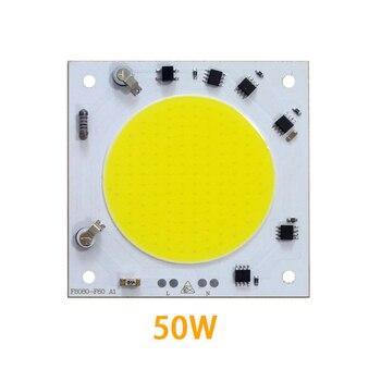 10PCS/LOT COB LED Lamp Chip 30W 40W 50W Bulb 220V Smart IC Driver Cold White Spotlight Floodlight