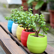 5pcs/lot Flower Pot Plate Flowers Garden Supplies Decoration Products Flowerpot Nursery Pots Gardening Bowl Potted Plant Stand