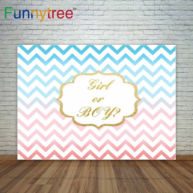 Pastel Pink And Blue Chevron Stripes Gold Frame Baby Shower Background  Gender Reveal Party Decoration Decor