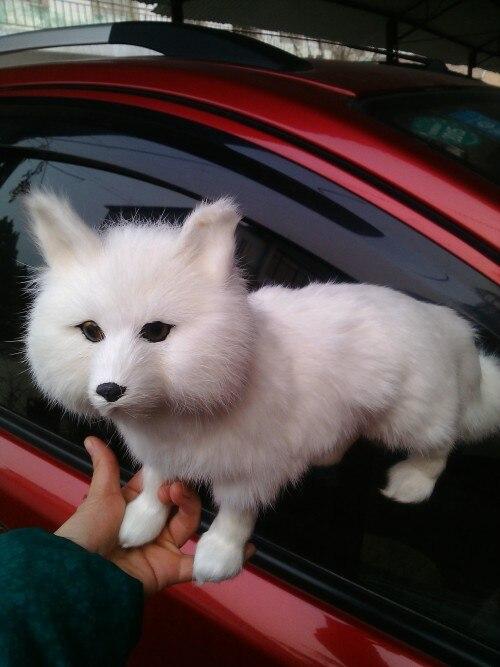 Моделирование лиса большой 35x23 см WHITE FOX модель игрушки, полиэтилен и меха игрушка опору, украшение дома, Рождество подарок 1108