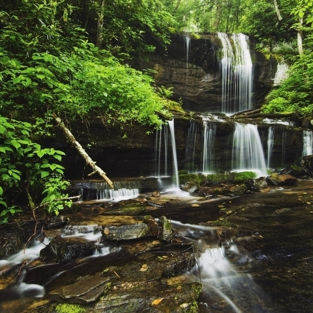 North Carolina  United States Of America; Lush Summer Foliage At Grassy Creek Falls Poster Print (38 x 24)