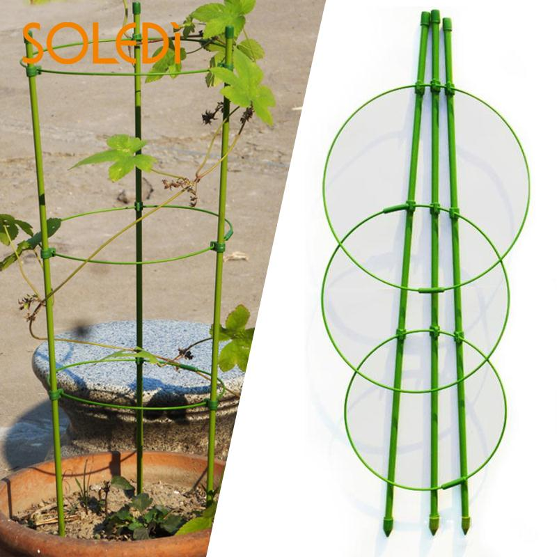 60cm Flower Plants Clematis Climbing Rack Support Shelf House Plant Growth Scaffold Ladder Building Garden Tool Ladders