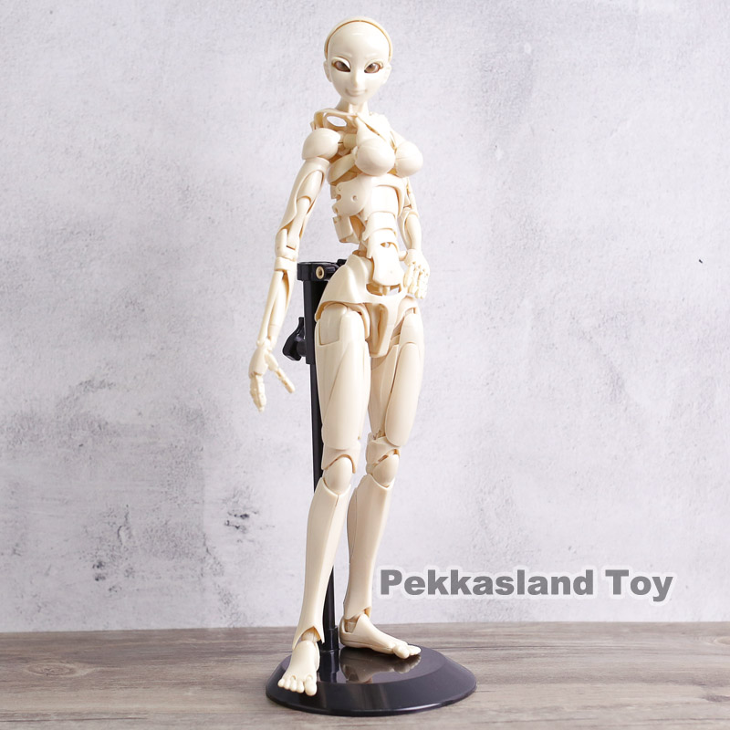 S.F.B.T-3 Special Fullaction Body Type-3 Wayward Girl Movable Action Figure Collectible Model Toy 30cm 2017 anime body kun body chan movable action figure model toys anime mannequin bjd art sketch draw collectible model toy