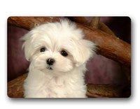 CHARMHOME New Doormat Maltese Puppy Indoor Outdoor Front Door Mat