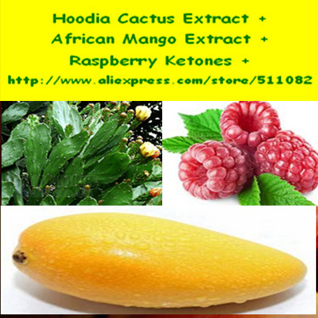 1 Pacote de Extrato de Hoodia Cactus + Extrato de Manga Africano + Framboesa Cetonas Complexo Cápsula 450 mg x 200 Contagens