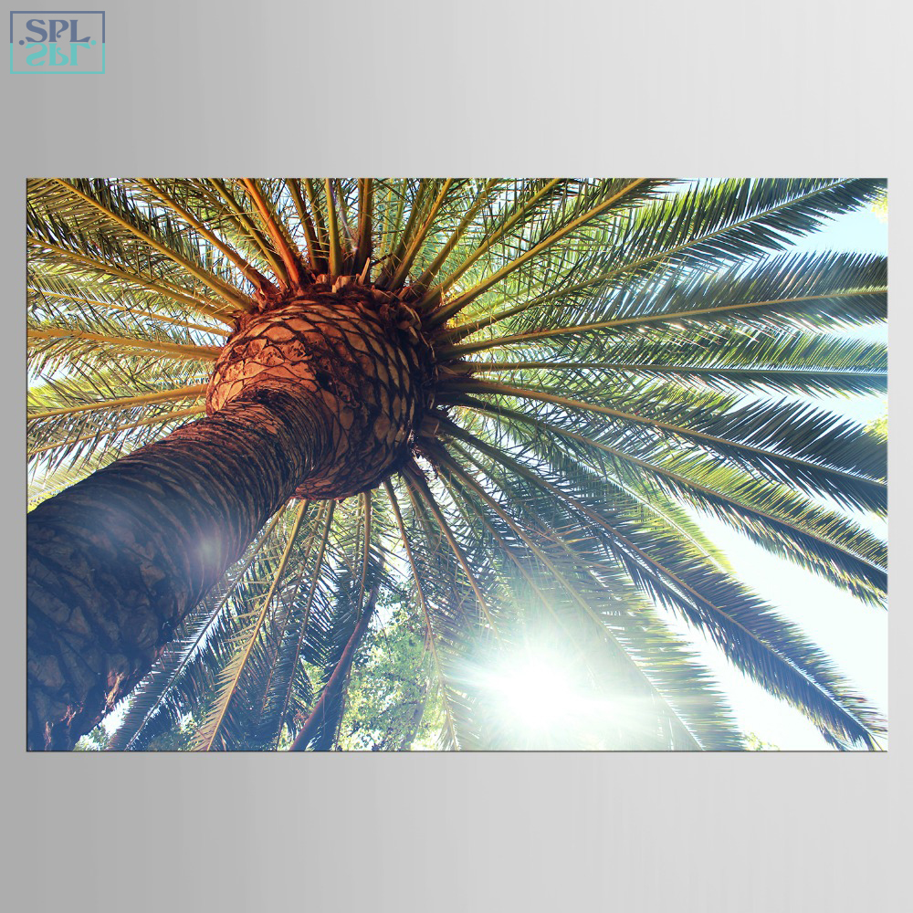 Splspl frameless modern hawaii landscape wall a4 art picture green palm tree canvas artwork print poster painting for bedroom in painting