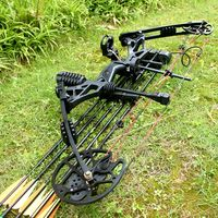Hunting Compound Archery Set With Quiver Brush Arrow Rest Pins Sight 6 Monthes Garentee