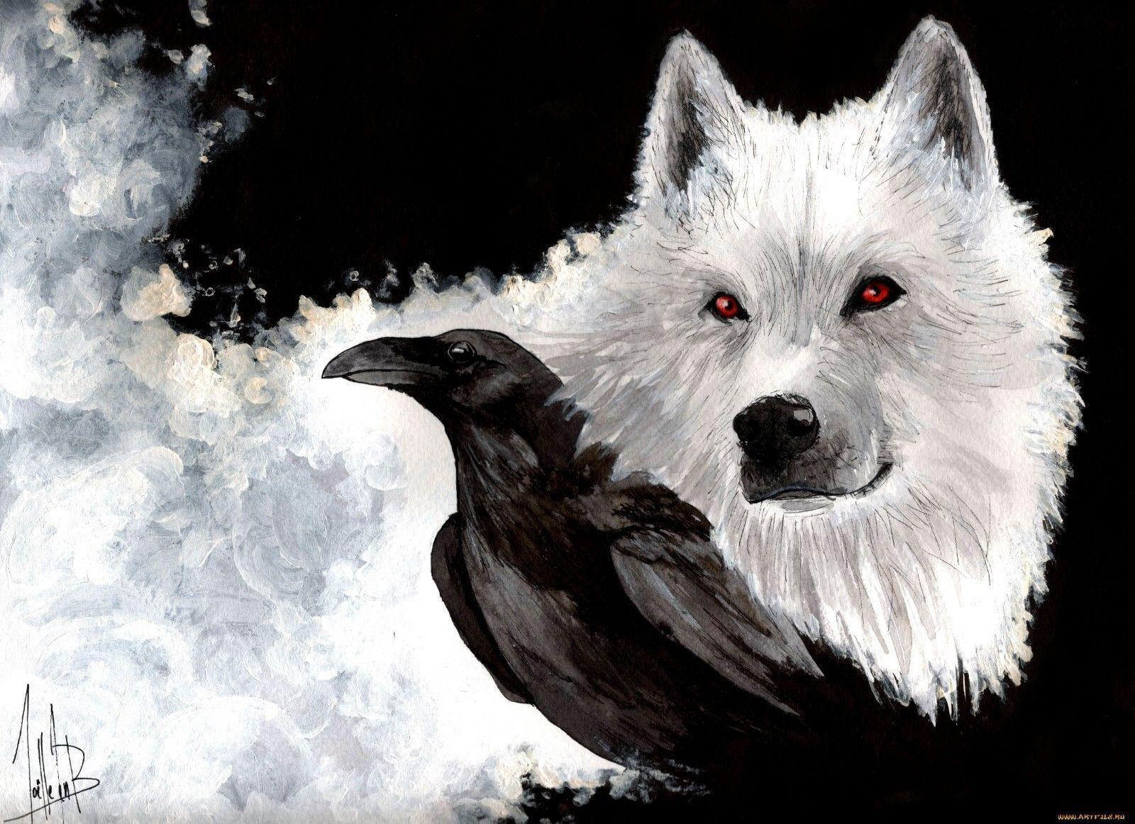 Thrones Wolf Crow afişasının oyunu ev bəzək kətan Çap 50x75cm - Ev dekoru - Fotoqrafiya 1