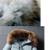 Buenos Ninos 8 cores com capuz grosso pato branco para baixo não destacável gola de pele artificial zíper cintura ajustável casacos quentes 40