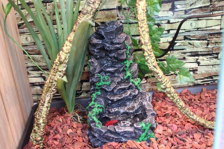 Reptile fontaine à boire circulant Pet fontaine d'eau chute d'eau Vivarium décor Terrarium décoration