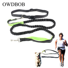Elastic Waist Dog Leash for Running Jogging Sports Training Retractable Hands Free Lead with Reflective Strip