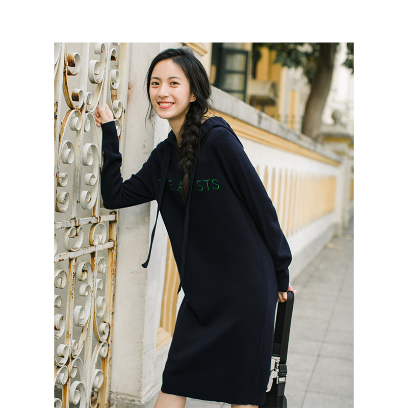 إنمان 2019 الربيع الخريف جديد وصول الإناث مقنعين الرباط التطريز طويلة الأكمام الحياكة سترة-في فساتين من ملابس نسائية على  مجموعة 2