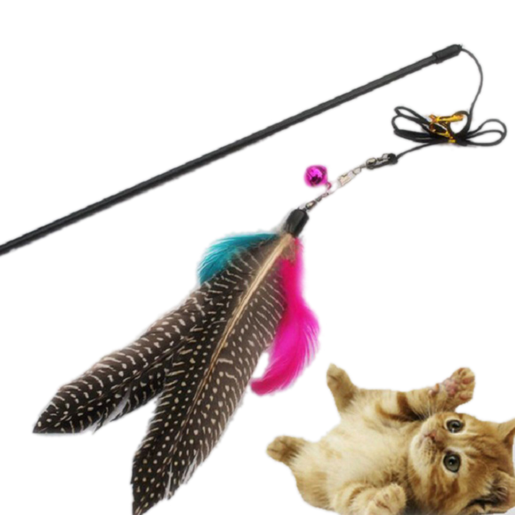 Cute Design bird Feather Teaser Wand Plastic Toy for cats Top quality Pet cat toy Color Multi Products For pet Free shipping