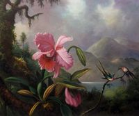 Dining Room Painting Flower Oil Painting Orchids And Hummingbirds 1890 By Martin Johnson Heade Famous Wall
