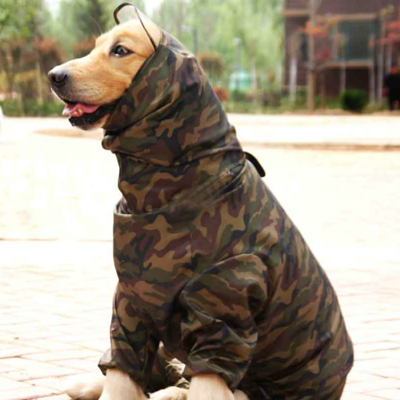 Bigeyedog Male and Female Dog Raincoat Large Dog Clothes ...