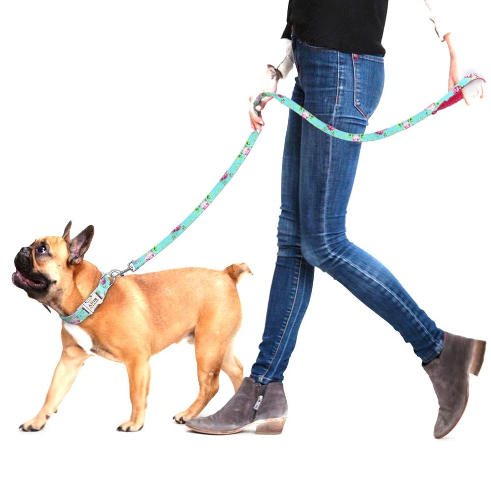 yavru köpek tasması