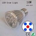 10 W Cresce A Luz LED, 1 Red & 4 Bule, AC85-265V E27, para plantas suculentas Plantas Suculentas Em Crescer Tenda