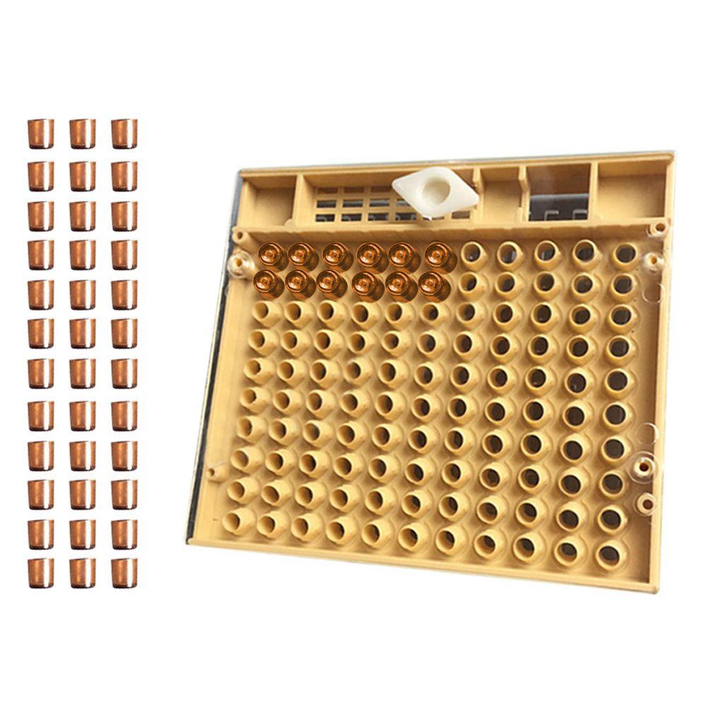 NOCM-equipo de herramientas de apicultura conjunto de sistema de cría de la Reina Caja de cultivo 110 piezas de plástico de abeja taza de la Reina jaula