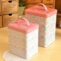 FREE SHIPPING iron tin box TB54 for 1pc pinky gift box for zakka trinket and home decoration & kitchen storage container