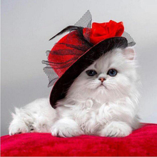 La circular de diamante, un gato en un sombrero de 5D pintura diamante Cruz puntada niños bordado de diamantes mosaico casa Decoración YY