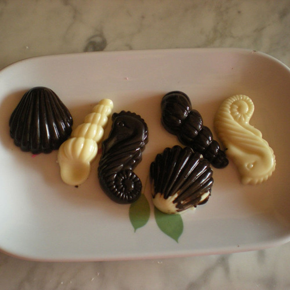 Hippocampus-Scallop-Sea-Shell-Maker-Polycarbonate-PC-Chocolate-Mold-Candy-Moulds