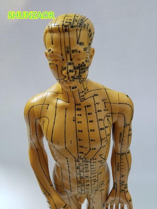 Ciência Médica de acupuntura do corpo humano Tipo : Maniquim