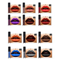 6 Colors Professional Matte Liquid Lipstick Cosmetic Kit Water-proof Long-lasting Lip Gloss Set Lip Stick Beauty Makeup Tool