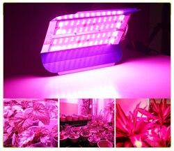 LED Wachsen Licht 100W 50W Voll Spektrum Phytolamp Wasserdichte COB LED Anbau Lampen Für Pflanzen Blumen IP65 Phyto lampe 220V
