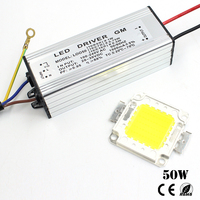 LED Real Full Watt High Power Integrated Chip 50W COB LED Lamp Beads Bulb With IP67