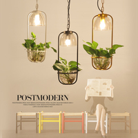 Nordic Modern White/Black/Golden Painted Iron Frame with Glass Bottle Plant Hanging Light LED Pendant Light for Bar Cafe