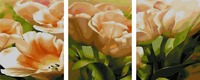3 Panels Frameless Picture On Wall Acrylic Oil Painting By Numbers Flowers Home Decor Modern Abstract