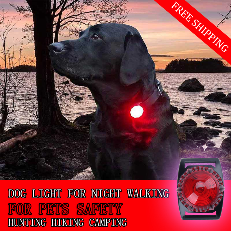 LED Dog Collar Light Flash Light in Dark Night Pet Safety Light LED Cat Accessories Dual Function Waterproof Night Walking Light 2 in 1 fiber blue light dog collar 5mm led white light dog light
