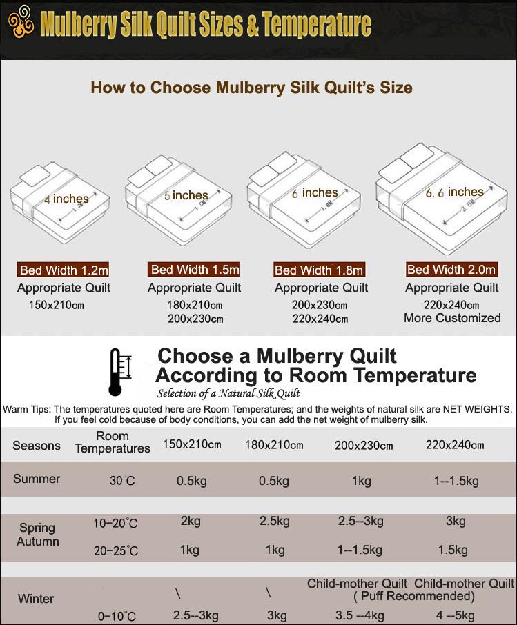Mulberry Silk Quilt 22