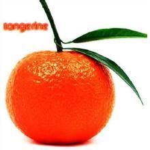 Mandarina Fruta  Compra lotes baratos de Mandarina Fruta de China