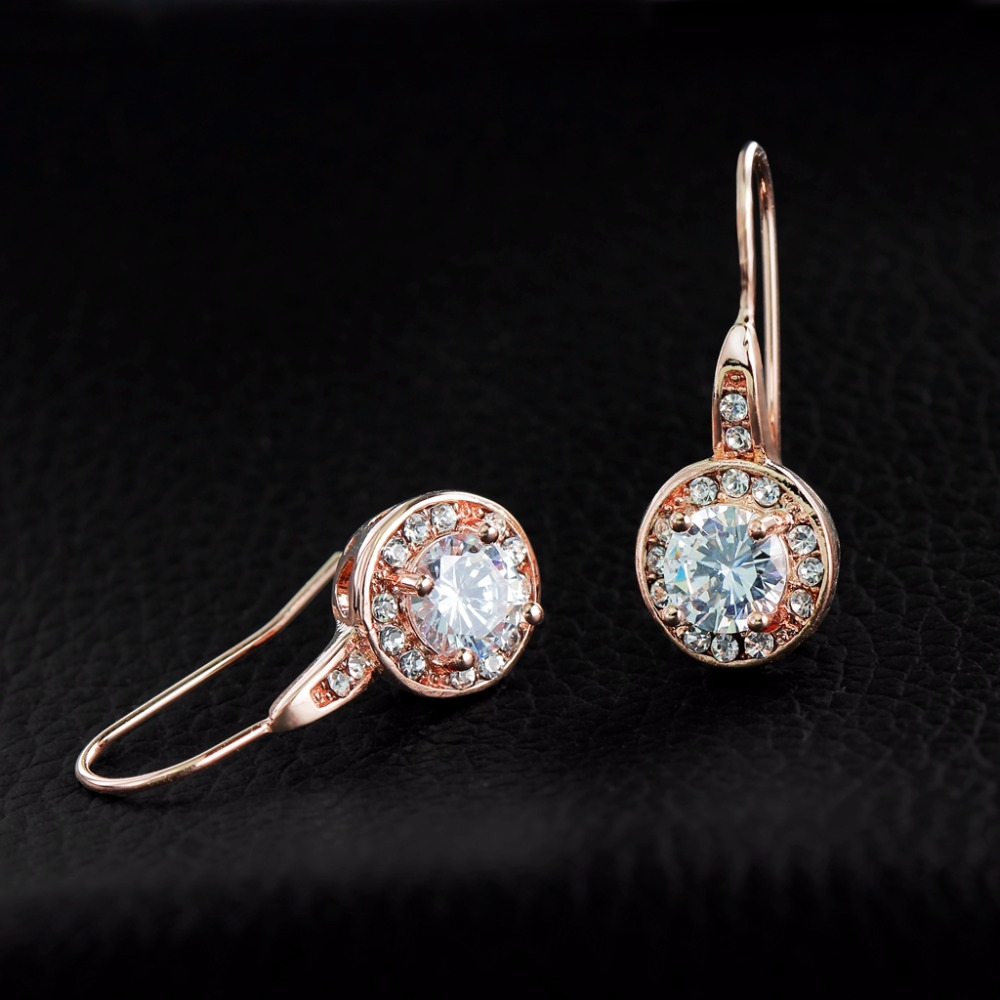 Pls Contact Us Before You Leave Neutral Or Negative Feedback About Gr Nerh Brand Jewelry Rose Gold 1ct Round Cz Stone Hook Earrings High Quality