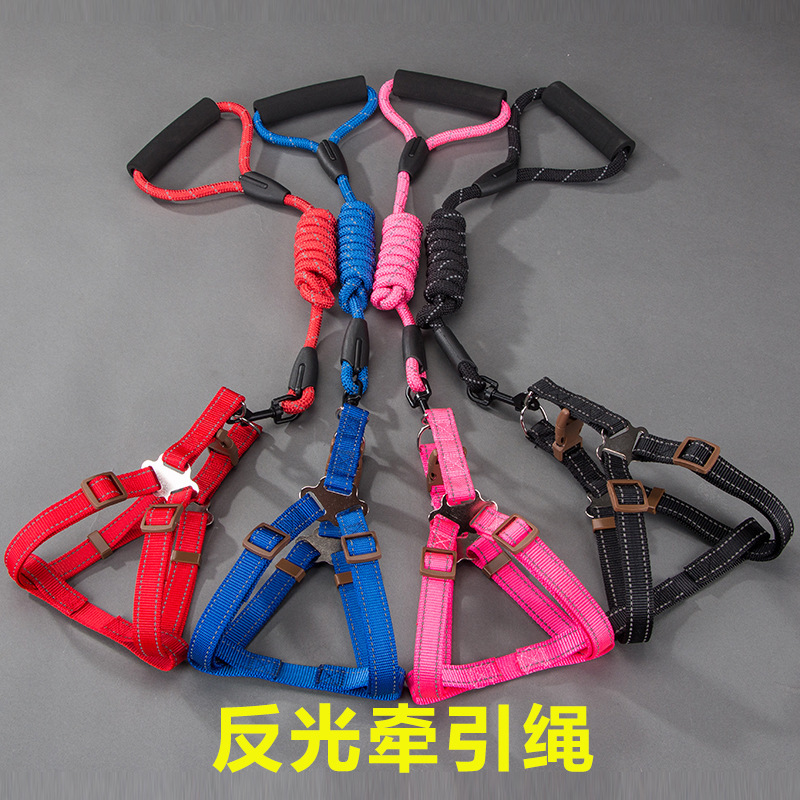 Nylon  Foam Handle Dog Leash Collars Harness and Set Personalized for Small Medium Cat