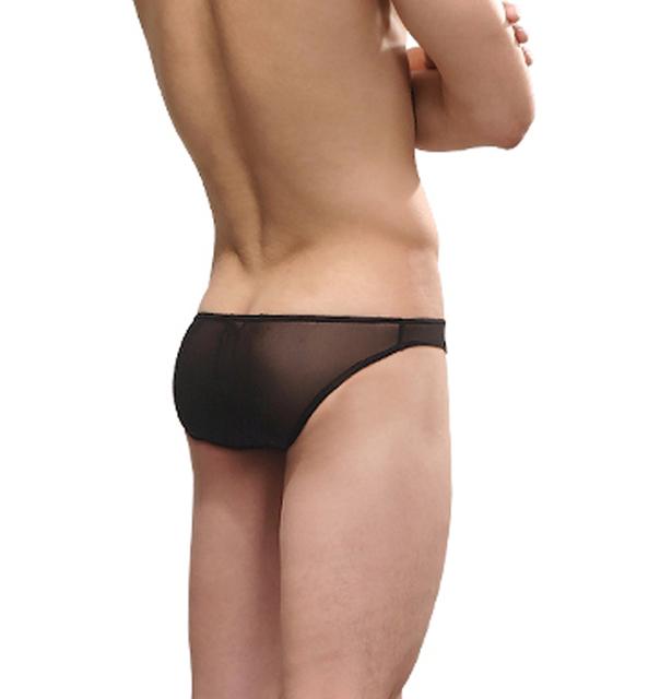 Low-waist gauze sexy male briefs male transparent panties