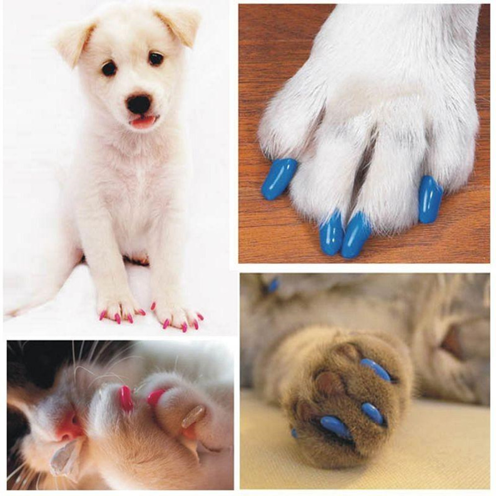 20 PCs Set Colorful Soft Nail Caps for Cats Dogs Puppy Kitten Paws