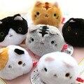 Япония peluche Сан-x плюшевые игрушки мультфильм Суши Кошки/Kutusita Nyanko кот косплей мини симпатичные плюшевые куклы 6 стилей бесплатно доставка