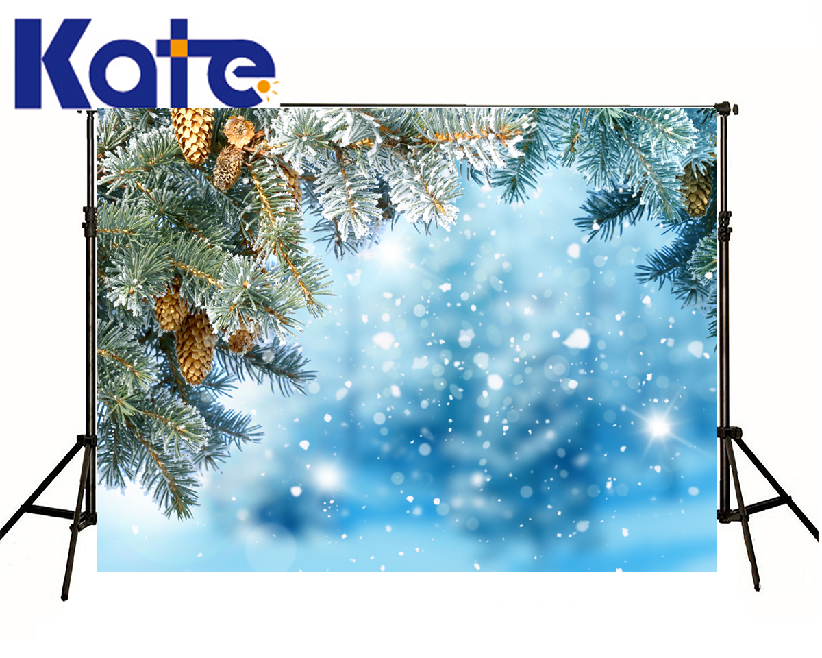 Kate Backdrop Photography Christmas Frozen Tree Blue Sky Fundo Fotografico Madeira White Lighting Spot Photocall Para Bodas blue sky white clouds beach coconut tree backdrops fotografia fundo fotografico natal background photograph