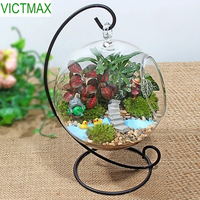 VICTMAX Iron Shelf Hanging Glass Ball Flowerpot Office Garden Decoration DIY Planter Vase – Transparent + Black