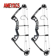 1set Arcehry 38inch Compound Bow 30-55lbs 310FPS Pulley Bow Adjustable Draw Length For Hunting Sports Shooting Competition 1set metal alloy 38inch compound bow 30 55lbs adjustable pulley bow for outdoor hunting sports shooting training archery bow