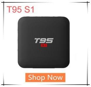 T95 S1