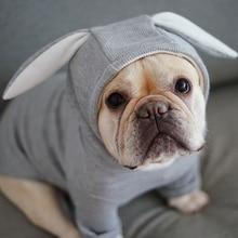 Bluza dla psa z uszami króliczka