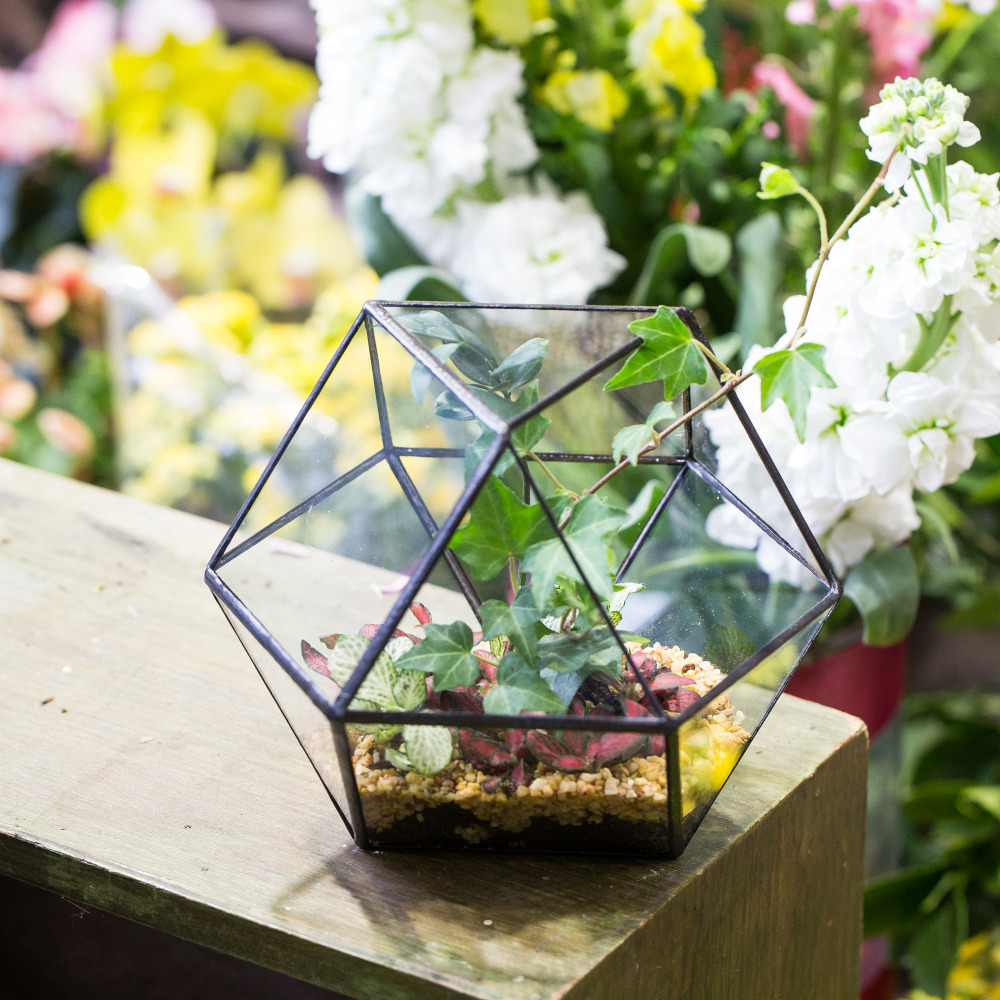 Taman Balkoni Atas Meja Pot Bunga Kreatif Geometric Clear Plain Container Plants Bonsai Flower Planter
