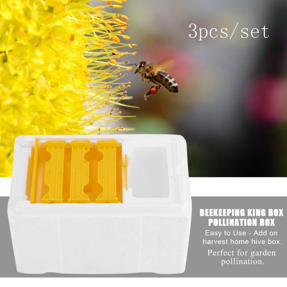 Wholesale 3pcs set Hive Box Harvest Bee Hive Beekeeping King Box Pollination Box Beekeeping Tool Harvest