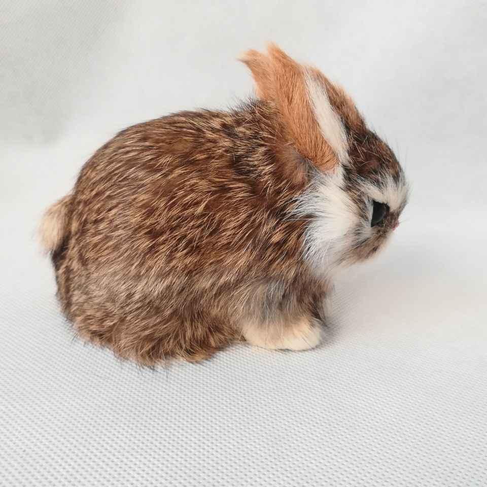 Около 13x7x10 см настоящая жизнь игрушка коричневый кролик модель полиэтилена и меха Кролик модель украшения реквизит, модель подарок d0489