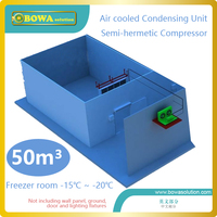 Complete refrigeration equipments for 50m3 freezer room of fish and meat replace Bitzer air cooled condensing units