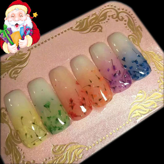 new arrival 6 colors real dry flower uv gel . 3D nail art flower uv gel , nail art uv gel,nail art tools , Manicure kit